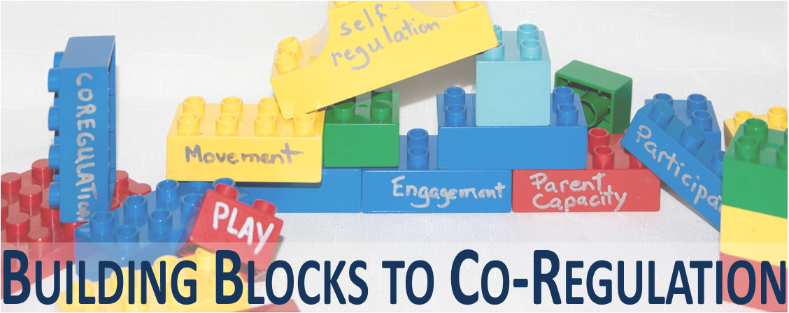 Building Blocks to Co-Regulation